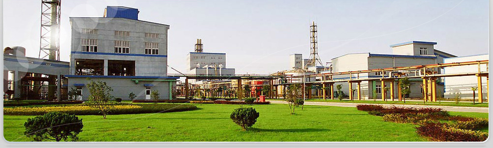 Shanhong Chemical Co,Ltd